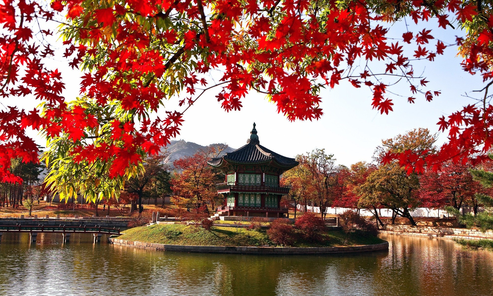 Autumn In South Korea The Country S Best Spots For Fall In One Amazing Road Trip